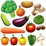 Different kind of fresh vegetables Royalty Free Stock Images