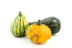Different kind of gourds Stock Images