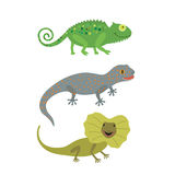 Different kind of lizards icons set. Stock Photography