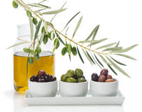Different kind of olives and branch of olive tree with drops, ol Stock Photos