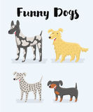 Different kind of puppy dogs illustration Stock Photo