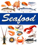 Different kind of seafood and text Stock Photography