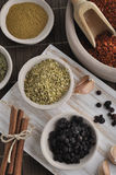 Different kind of spices Stock Photography