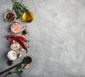 Different kind of spices in bowls Royalty Free Stock Images