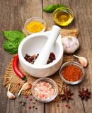 Different kind of spices Royalty Free Stock Photo