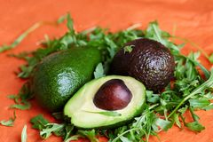 Different kinds of avocado with green salad rucola on bright coral background. Organic food concept. royalty free stock photos