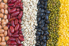Different kinds of bean seeds. Close up of Different kinds of bean seeds Stock Photo