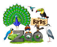 Different kinds of birds in the zoo Stock Photography