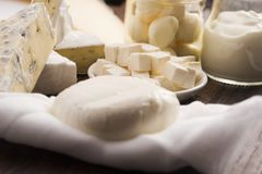 Different kinds of cheese Royalty Free Stock Images