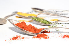 Different kinds of dried spices on metal spoons Royalty Free Stock Photos