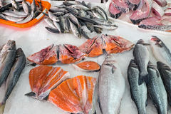 Different kinds of fish for sale Stock Photo