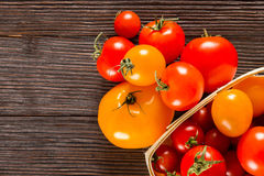 Different kinds of fresh tomatoes Stock Image