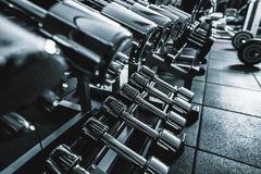 Different kinds of glossy barbells Royalty Free Stock Image