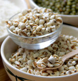 Different kinds of Grains. Lentil, peas in dish on wooden table Royalty Free Stock Images