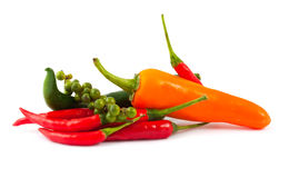 Different kinds of hot pepper Royalty Free Stock Image