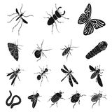 Different kinds of insects black icons in set collection for design. Insect arthropod vector isometric symbol stock web. Different kinds of insects black icons Stock Photography
