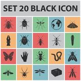 Different kinds of insects black icons in set collection for design. Insect arthropod vector symbol stock web. Different kinds of insects black icons in set Royalty Free Stock Images