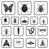 Different kinds of insects black icons in set collection for design. Insect arthropod vector symbol stock web Stock Photo