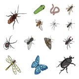 Different kinds of insects cartoon icons in set collection for design. Insect arthropod vector isometric symbol stock. Illustration Stock Photo