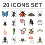 Different kinds of insects cartoon icons in set collection  Royalty Free Stock Photos