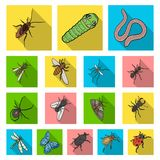Different kinds of insects flat icons in set collection for design. Insect arthropod vector isometric symbol stock web. Different kinds of insects flat icons in Stock Photo