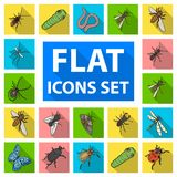Different kinds of insects flat icons in set collection for design. Insect arthropod vector isometric symbol stock web. Different kinds of insects flat icons in Stock Photography