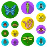 Different kinds of insects flat icons in set collection for design. Insect arthropod vector symbol stock web. Different kinds of insects flat icons in set Stock Photography