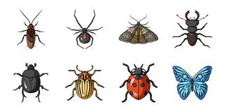Different kinds of insects icons in set collection for design. Insect arthropod vector symbol stock web illustration. Different kinds of insects icons in set Stock Image
