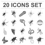 Different kinds of insects monochrome icons in set collection for design. Insect arthropod vector isometric symbol stock. Illustration Royalty Free Stock Photo