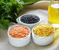 Different kinds of lentils Stock Photography