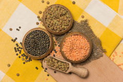 Different kinds of lentils Stock Images