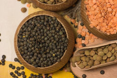 Different kinds of lentils Royalty Free Stock Photo