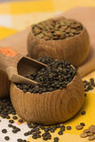 Different kinds of lentils Royalty Free Stock Photography