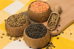 Different kinds of lentils Stock Image