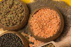 Different kinds of lentils Stock Photos