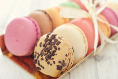 Different kinds of macaroons Stock Image