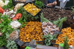 Different kinds of mushrooms for sale. At a market in London, UK royalty free stock photography