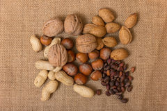 Different kinds of nuts Stock Photography