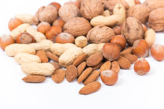 Different kinds of nuts Royalty Free Stock Image