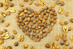 Different kinds of nuts in the form of heart Royalty Free Stock Photos