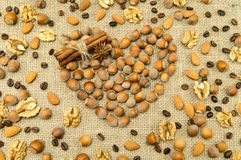 Different kinds of nuts in the form of heart Royalty Free Stock Photography