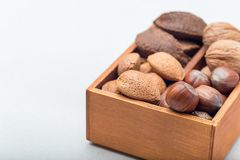Different kinds of nuts in shell. Hazelnut, walnut, almond and brazil nuts in wooden box, horizontal, copy space. Different kinds of nuts in the shell. Hazelnut royalty free stock image
