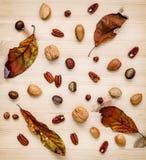 Different kinds of nuts walnuts kernels ,hazelnuts, almond kerne Royalty Free Stock Image