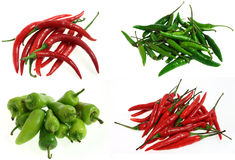 Different Kinds Of Chilli Royalty Free Stock Photos