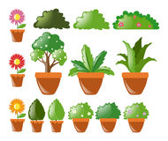 Different kinds of plants in pot. Illustration Royalty Free Stock Photography