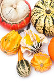 Different kinds of pumpkins. On a white background royalty free stock image