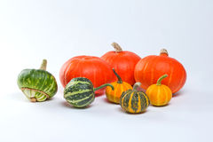 Different kinds of pumpkins Stock Photo