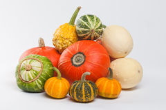 Different kinds of pumpkins. Halloween decoration element Stock Photography
