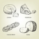 Different kinds of realistic cheese. Graphic vector collection. Sketch of different kinds of realistic cheese. Graphic vector collection include gouda, parmesan Stock Images