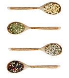 Different kinds of seasoning Royalty Free Stock Images